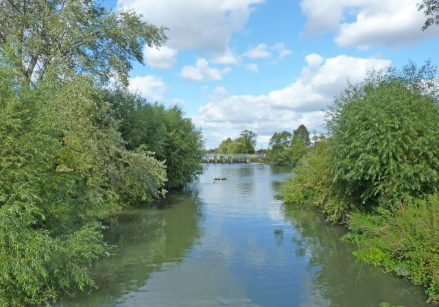 Wittenham Clumps river